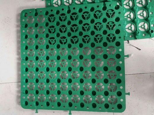 绿色塑料排水板
