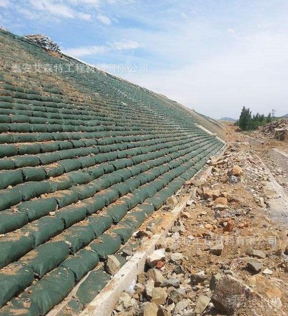 湖北宜昌生态绿化基础建设
